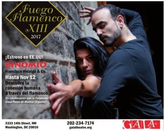 Fuego Flamenco XIII 2017