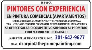 Pintores con Experiencia