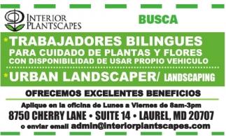 Trabajadores Bilingues