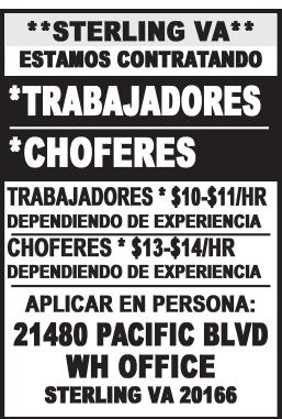 Trabajadores - Choferes
