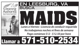 Busca Maids