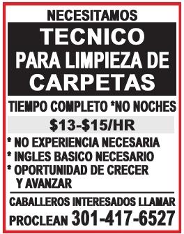 Tecnico de Limpieza de Carpetas