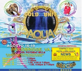 Gold Unit Aqua