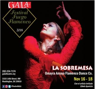 Festival Fuego Flamenco