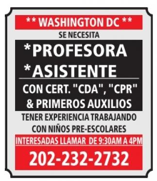 Profesora / Asistente