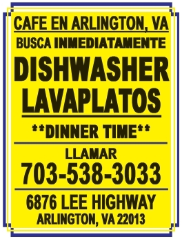 Dishwasher Lavaplatos