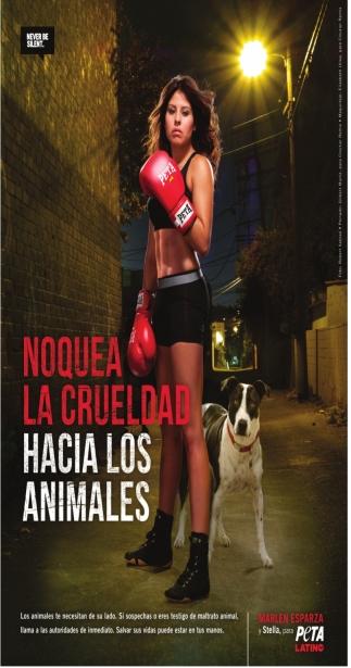 Noquea la Crueldad Hacia los Animales