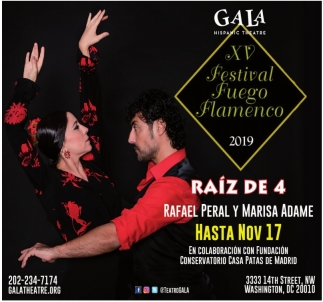 XV Festival Fuego Flamenco