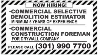 Commercial Selective Demolition Estimator