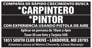 Carpintero / Pintor