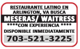 Meseras / Waitress