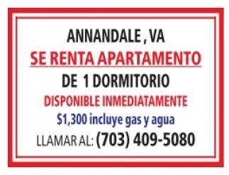 Se Renta Apartamentos
