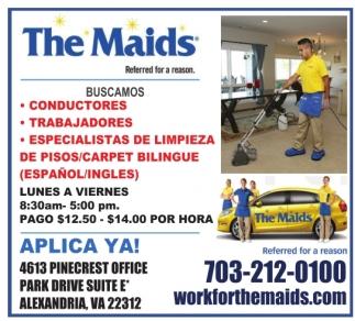 Conductores / Trabajadores / Especialista De Limpieza